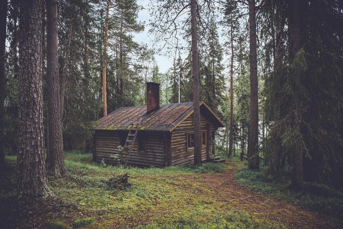 Dom drewniany w lesie